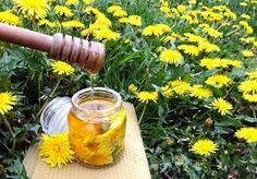 miód mniszkowy Taki miód mniszkowy możemy użyć w celu wzmacniania organizmu przy osłabieniu, czy też podczas przeziębienia. Co więcej, kwiaty mniszka mają silne działanie przeciwzapalne. W związku z czym skorzystajmy z tego.  Potrzebujesz:     Kwiatów mniszka, całych z płatkami i szypułką     Lokalnego miodu     2cm nieobranego korzenia imbiru (opcjonalnie )     Otartą skórkę z cytryny     Sok z połowy cytryny Kwiaty mniszka rozkładamy na papierze, aby przeschły, najlepiej na kilka godzin, dod Conservation, Dandelion Flower, Polish Recipes, Edible Flowers, Natural Cosmetics, Simple Syrup, Health And Beauty, Food And Drink, Homemade