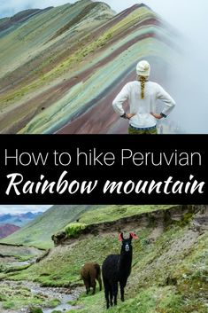 Visiting Rainbow Mountain in Peru is for many a dream. Make that dream a reality and use our tips to have one of the best days of your life. | Rainbow Mountain in Peru | Vinicunca Peru | Hiking in Peru | Day hike to Rainbow Mountain | Rainbow Mountain Tour Cusco | Peruvian Mountains | Best hikes in Peru | What to do in Peru | Things to do in Peru| #peru #peruhiking #rainbowmountain #vinicunca