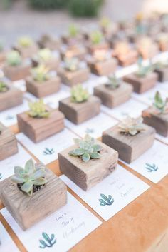 Succulent favors and escort cards #repin