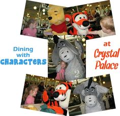 Dining with characters at Crystal Palace - on Main Street in the Magic Kingdom