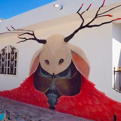 by Ruben Carrasco in Isla Holbox, Mexico (LP)