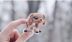 Littlest pet shop picture (C) zesty_lps