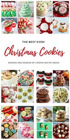 The best Christmas Cookie recipes! We have gathered a collection of the best Christmas Cookie ideas to make you the envy of your Christmas Cookie exchange! Mini Desserts, Cookie Desserts, Holiday Desserts, Holiday Baking, Holiday Treats, Holiday Recipes, Cookie Recipes, Christmas Recipes, Best Christmas Cookie Recipe