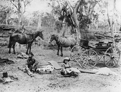 Bushrangers provides information and images about the history of Australian bushrangers from 1805 to Brisbane Queensland, Queensland Australia, Australia Day, Australia Travel, Australian Bush, Australian People, Black Soil, Largest Countries, Historical Pictures