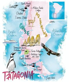 Patagonia map by Scott Jessop Travel Maps, Travel Posters, Places To Travel, Travel Destinations, Argentina Map, Argentina Travel, Travel Pictures, Travel Photos, Puerto Natales
