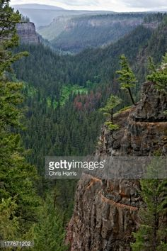 Stock Photo : View over the Chasm, a volcanic gorge near Clinton, British Columbia, Canada
