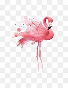 hand-painted flamingos,cartoon flamingo,creative flamingos,red flamingo,hand-painted,flamingos,cartoon,flamingo,creative,red,flamingos clipart Flamingo Vector, Watercolor Texture, Background Images, Backgrounds, Clip Art, Hand Painted, Graphic Design, Cartoon, Drawings