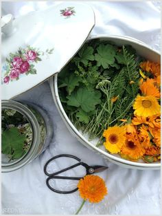 REDNEVAL Herb Garden, Curry, Herbs, Homemade, Ethnic Recipes, Food, Curries, Herbs Garden, Herb