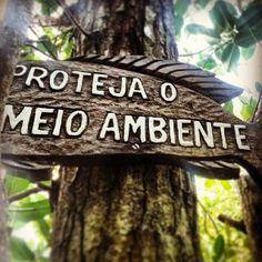 No Dia Mundial do Meio Ambiente, o melhor presente é protegê-lo! Porto da Barra, Armação de #Búzios. Foto: @pridutra_