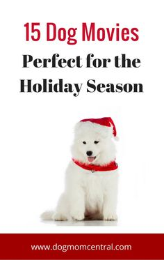 There's nothing like watching a classic movie with family to put you in the holiday spirit! These 15 flicks featuring a dog are paw-fect for the Christmas season.
