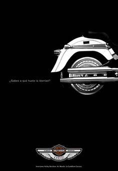 b210a7a031f 98 melhores imagens de Harley-Davidson