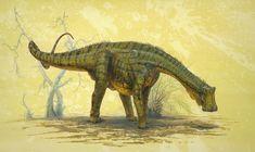 Nigersaurus - Todd Marshall