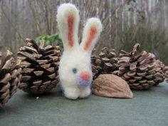 Walnut rabbit by-Brett Superstar