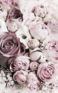 blumen-floral-bluht-haufen-straus-schnittblumen-getrocknete-blumen-summ/ delivers online tools that help you to stay in control of your personal information and protect your online privacy. Pretty Flowers, Pink Flowers, Paper Flowers, Pink Roses, Purple Peonies, White Peonies, Summer Flowers, White Roses, Flower Phone Wallpaper