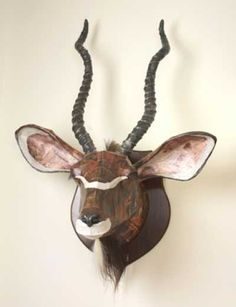 Wire, plaster bandage, paiper mache, Field Sports, Game Birds and Game Animals #sculpture by #sculptor David Farrer titled: 'Kudu (wall mounted trophy head Sculpture)' #art
