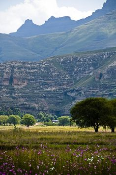 Home below the mountains, Kingdom in the Sky, Lesotho (photo) by Marie-Marthe Gagnon, via Flickr