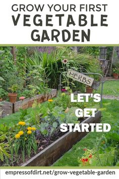 Use this easy guide to grow vegetables in raised beds or containers from seed. Find out when to sow and use the sample sowing plant to get your victory garden started now. garden vegetables raised beds How to Grow Vegetables for Beginners Starting A Vegetable Garden, Vegetable Garden For Beginners, Vegetable Garden Design, Garden Landscape Design, Gardening For Beginners, Garden Landscaping, Gardening Tips, Organic Gardening, Vegetable Gardening