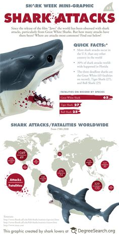 "Since the release of ""Jaws"" the world has been obsessed with shark attacks, particularly from Great White Sharks. But how many attacks have there been? Where are attacks most common? Find out in this graphic. Orcas, Shark Facts, Marine Biology, Great White Shark, Animal Facts, Ocean Creatures, Sea Monsters, Shark Week, Shark Attacks"
