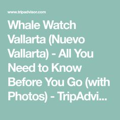Whale Watch Vallarta (Nuevo Vallarta) - All You Need to Know Before You Go (with Photos) - TripAdvisor