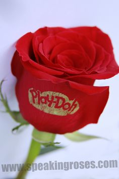 Here at Speaking Roses can print on live, fresh flowers for any special occasion or holiday! Even for today, National Play-Doh day!  www.speakingroses.com