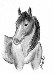Original horse ACEO drawing #ebay