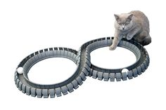 Magic Cat Track and Ball Toy for kittens pets kitties cats *** See this great product. (This is an affiliate link) Magic Cat, Cat Reading, Cat Mouse, Cat Fleas, Cat Carrier, Cat Memorial, Cat Accessories, Pet Toys, Cat Lovers