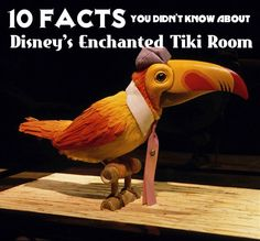 """10 silly facts about Disney's Enchanted Tiki Room. I only knew 3 of these. So much for being a """"disney expert"""" lol."""