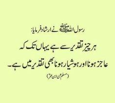 Hazrat Ali Sayings, Imam Ali Quotes, Hadith Quotes, Urdu Quotes, Wisdom Quotes, Quotations, Best Islamic Quotes, Beautiful Islamic Quotes, Quran Quotes Inspirational