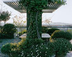 Paysage Urbain | Jardin | Camille Muller paysagiste