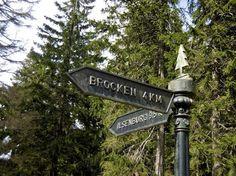 Towards the Brocken
