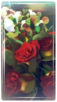 Fall(ing) roses