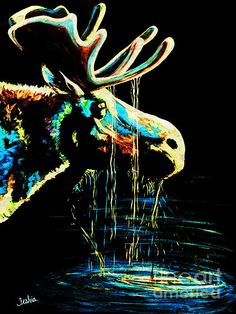 Colorful Contemporary Bull Moose Art Painting   Contemporary Western Wildlife Art by Animal Artist Teshia  Original Paintings & Art Prints www.TeshiaArt.com