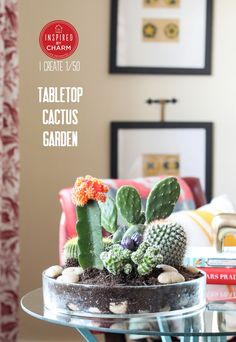 Love it - Tabletop Cactus Garden! Polish the Look off with Custom Engraved Signs for Plants. http://www.kincaidplantmarkers.com/