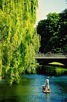 Avon River, Christchurch, New Zealand - how strange to see the same activities and scenery as my hometown on the other side of the planet!