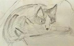Priscilla the Cat, pencil and graphite wash, 2014