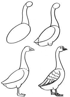 How to Draw Birds Bird Drawings, Pencil Art Drawings, Art Drawings Sketches, Animal Drawings, Cute Drawings, Easy Drawings For Kids, Drawing For Kids, Basic Drawing, Simple Bird Drawing