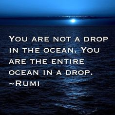you are the ocean in a drop. and the drop in the ocean. .and the ocean that has been... That's what I feel.
