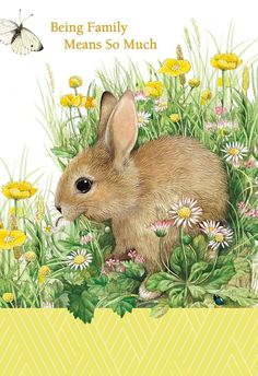 Animals Drawing - Brighten a birthday with this wonderfully illustrated card by Marjolein Bastin with its beautiful sentiment about family connections. Bunny Painting, Pebble Painting, Butterfly Painting, Garden Painting, Butterfly Flowers, Flowers Garden, Summer Flowers, Bunny Art, Cute Bunny