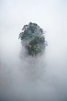 A forested island in a sea of mist, formerly known as the Southern Sky Column, is now Avatar Hallelujah Mountain.