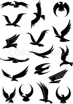 Stock vector ✓ 16 M images ✓ High quality images for web & print | Flying eagle, falcon and hawk vector logo icons showing different wing positions in b...