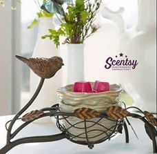 NEST SCENTSY WARMER A mama bird poses watchfully over her home. Expertly applied contours and colors, each showcasing the artistry behind this lovely natural rendering, are the details that set this warmer apart.