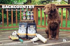 Freighter Is A Big Fan Of Merrick's Backcountry Grain Free Raw Infused Dog Food #Wild4Backcountry #sponsored