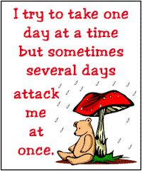 Image result for humorous sayings