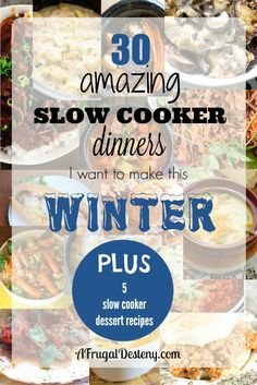 The cold of winter always brings with it an urge to use the slow cooker on a nearly daily basis! Here are 30 dinners & 5 desserts I plan to try this year.