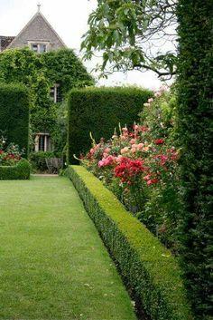 hedge #gardens #yards #backyardideas