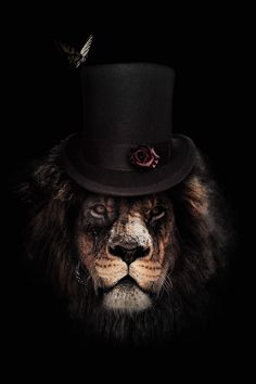 Dark Lion Close-up poster bestellen - PosterJunkie Acrylic Wall Art, Canvas Wall Art, Wall Art Prints, Canvas Prints, Canvas Paper, Lion Poster, Poster Art, Vogel Tattoo, Animal Dress Up