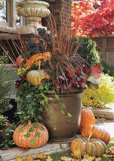Organic Gardening Supplies Needed For Newbies Fall Container Gardens Images Read More In Gardens And Container Gardening Fall Containers, Succulent Containers, Fall Container Gardening, Fall Planters, Autumn Planter Ideas, Planters For Front Porch, Porch Planter, Porch Garden, Outdoor Planters