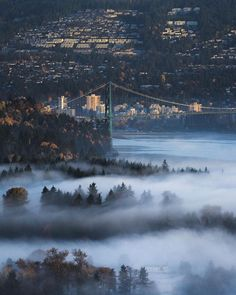 Explore the most beautiful places in Canada ▶️ . The Lions gate bridge over a foggy Vancouver! Photo by Visit Vancouver, Vancouver Travel, Vancouver City, Vancouver British Columbia, Stanley Park Vancouver, Vancouver Photos, Victoria British Columbia, Vancouver Wallpaper, Rive Nord