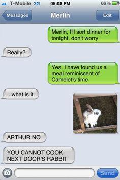 poor rabbit