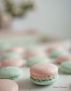 Tämän kevään juttu on ehdottomasti pastellit ja omasta mielestäni varsinkin pinkin ja mintun sävyt. Suunnittelinkesäkuussa juhlittavien valmistujaisten teemaa sekä tarjoiluja ja sain inspiraation kokeilla pastellin värisiä macaron -leivoksia. Tällaisia sitten niistä sitten tuli. Eihän näitä edes raaski syödä! Nämä ovat niin söpöjä! Macaron ohjeita olen kokeillut vaikka kuinka ja erilaisia. Olen miettinyt mikä menee vikaan … No Bake Cookies, Baking Cookies, Macaroons, Delicious Desserts, Hamburger, Cheesecake, Bread, Sweet, Food